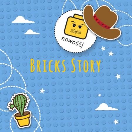 BRICKS Story