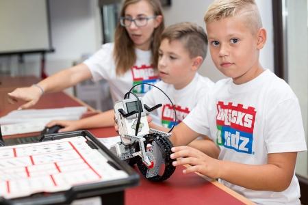 NIESAMOWITE ZWIERZĘTA - Młody Robotyk [9-12 lat]